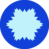 NSF-brand-mark-195
